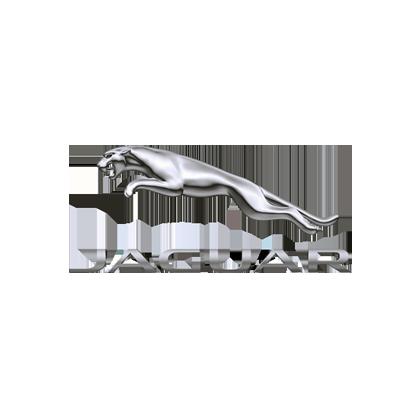 Montevago_Jaguar
